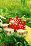Teezeit im Garten Lizenzfreies Stockbild
