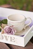 Teezeitpicknick Stockfotografie