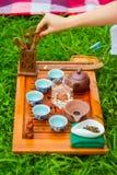 Teezeremonie auf dem Gras lizenzfreie stockfotos