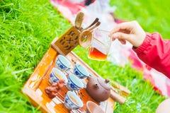 Teezeremonie draußen lizenzfreie stockfotos