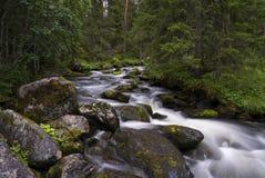 Tefafallet-Wasserfall Stockfotografie
