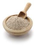 Teff面粉,埃赛俄比亚的食物 库存图片