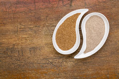 Teff grain and flour Stock Photography