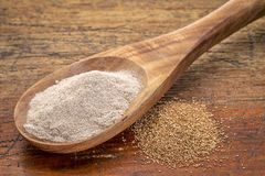 Teff grain and flour. I- a wooden spoon against grained wood background Stock Images