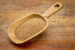 Teff grain scoop Stock Photography
