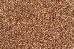 Teff grain Stock Photo