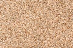 Teff Grains Stock Photos