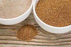 Teff korn och mjöl Arkivfoton