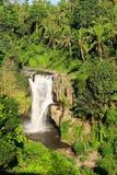 Tegallalang-Wasserfall Stockfoto