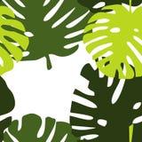 Tegel tropisch vectorpatroon met exotische bladeren op witte achtergrond Vector Illustratie