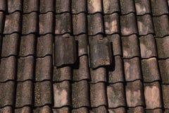 Tegelplatta tak, tak av ett hus royaltyfri foto