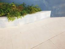 tegelplattagolvet och växter tränga någon arkivbild