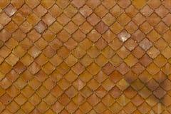 Tegelplattatak Wat Kong. Royaltyfria Bilder