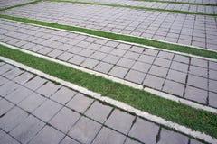 Tegelplattor och gräs Royaltyfri Bild
