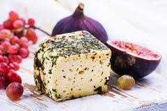 Tegelsten av kon mjölkar ost med örter och kryddor royaltyfri foto