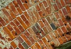 tegelsten fördärvar väggen Arkivfoto