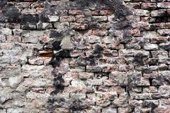 tegelsten förvriden vägg Royaltyfri Foto