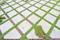 Tegelsten och gräs Arkivbild
