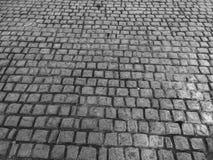 Tegelsten som lägger jordning royaltyfri fotografi