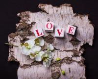 tegelstenar 3d med bokstäver som bildar ordförälskelse Royaltyfri Fotografi