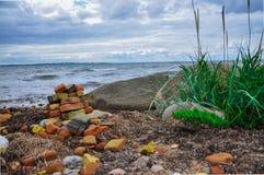 Tegelstenar och gräs vid havet Arkivbild