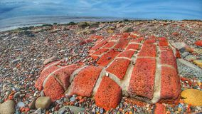 Tegelstenar som bort tvättas av tidvatten i Crosby Arkivbild