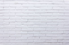 tegelstenar texture white Royaltyfri Foto