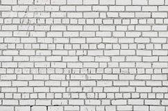tegelstenar wall white Arkivbilder