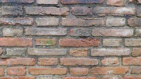Tegelstenarna av den Siena tapeten royaltyfria bilder