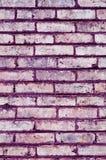 Tegelstenbakgrund Royaltyfria Foton