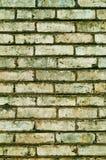 Tegelstenbakgrund Royaltyfri Foto