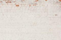 Tegelstenbakgrund, den gamla tegelstenväggen målade vitt och med stupat av murbruk royaltyfri bild