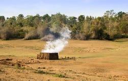 Tegelstenbrännugn i skog Arkivfoto