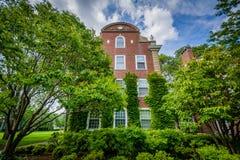 Tegelstenbyggnad och träd på den Harvard Business skolan, i Boston, Royaltyfri Fotografi