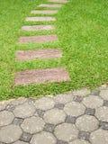 Tegelstengångbana med gräs Arkivbild