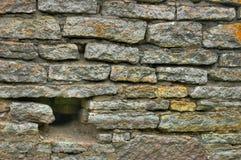 tegelstengrayvägg Arkivbild