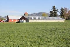 Tegelstenlantgårdbyggnad Arkivfoto
