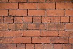 tegelstenredvägg Fotografering för Bildbyråer