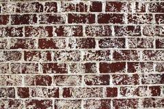 tegelstentexturvägg Arkivbild