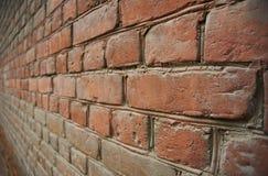 tegelstenvägg Fotografering för Bildbyråer