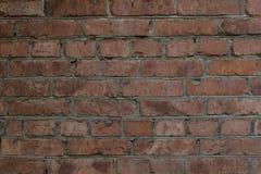 Tegelstenvägg av huset Royaltyfri Fotografi