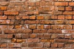 Tegelstenvägg - bakgrund Royaltyfri Foto