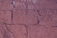 Tegelstenvägg för röd lera Royaltyfria Foton