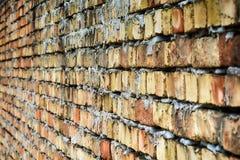 Tegelstenvägg från Serbien arkivbild