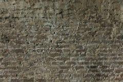 Tegelstenvägg med det naturliga murverket för murbrukgrå färgbakgrund royaltyfri foto