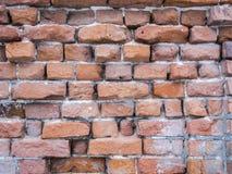 Tegelstenvägg med förfallen röd tegelsten Royaltyfria Bilder