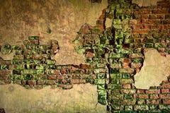 Tegelstenvägg med skalningsmurbruk Fotografering för Bildbyråer