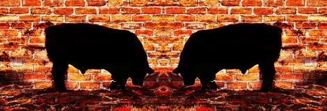 Tegelstenvägg med två tjurar Arkivfoto