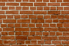Tegelstenvägg med vita sömmar passande för bakgrund Royaltyfri Fotografi