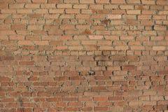 Tegelstenvägg som göras av röda tegelstenar Royaltyfri Foto